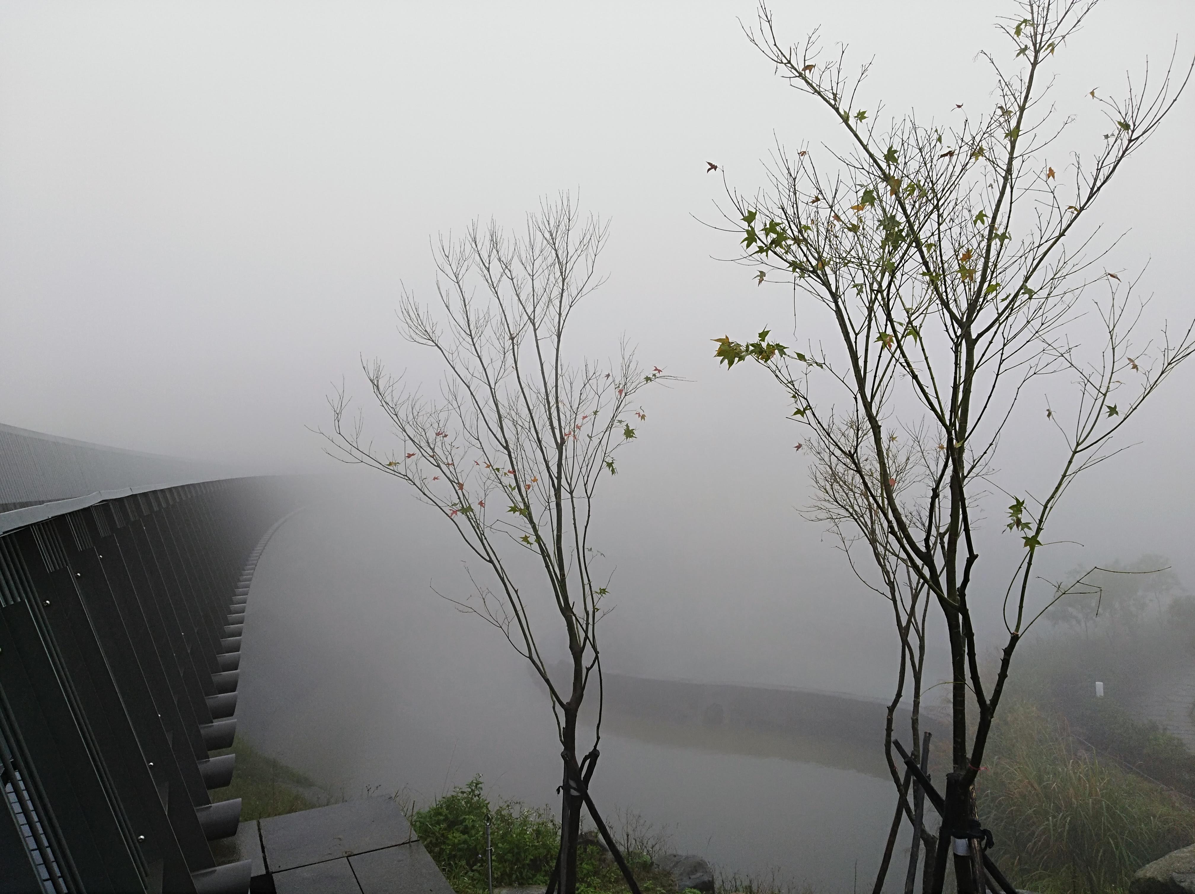 20霧來悟去…
